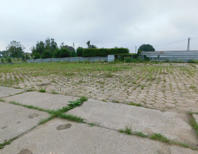 Działka na sprzedaż, Toruński Lubicz Brzeźno, 2 800 000 zł, 14 000 m2, 30251
