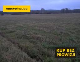 Działka na sprzedaż, Mławski Lipowiec Kościelny Lewiczyn, 150 000 zł, 43 500 m2, FUZE683