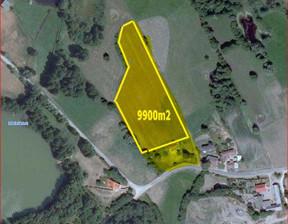Działka na sprzedaż, Słupecki Orchowo Skubarczewo ładne miejsce blisko jeziora, 155 000 zł, 9900 m2, 1202088