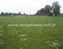 Działka na sprzedaż, Lubelski Jastków Płouszowice-Kolonia, 390 000 zł, 3820 m2, LUB-GS-484