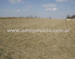 Działka na sprzedaż, Lubelski Wólka Rudnik, 387 000 zł, 5826 m2, LUB-GS-222