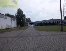 Fabryka, zakład na sprzedaż, Krośnieński Gubin Chociejów, 6 000 000 zł, 6800 m2, 48