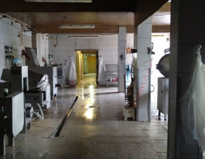 Fabryka, zakład na sprzedaż, Zabrze Kończyce, 3 500 000 zł, 1200 m2, PZ108-1