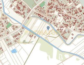 Działka na sprzedaż, Bydgoski Nowa Wieś Wielka Brzoza, 110 000 zł, 4997 m2, DMT-GS-111436
