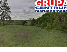 Działka na sprzedaż, Gdańsk Dzielnice Lipce, 2 000 000 zł, 20 000 m2, 42760959