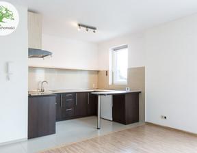 Mieszkanie do wynajęcia, Bielsko-Biała Biała Śródmieście, 1500 zł, 40 m2, 379