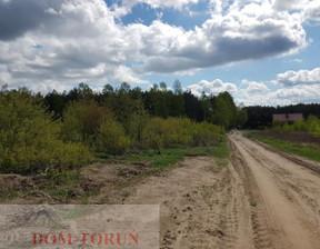 Działka na sprzedaż, Toruński Lubicz Lubicz Dolny, 1 750 000 zł, 26 981 m2, 2450