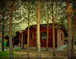 Dom na sprzedaż, Leszczyński Włoszakowice Boszkowo Dominicka, 450 000 zł, 100 m2, 670