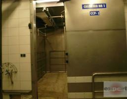 Komercyjne na wynajem, Zgierski Aleksandrów Łódzki, 25 000 zł, 850 m2, EXP-LW-8845-2