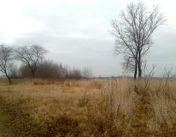 Budowlany-wielorodzinny na sprzedaż, Zawierciański (pow.) Irządze (gm.), 69 000 zł, 3100 m2, 8