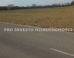 Działka na sprzedaż, Średzki Dominowo Murzynowo Kościelne, 463 000 zł, 8720 m2, PRO-GS-5175-3