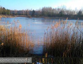 Rolny na sprzedaż, Zielonogórski Dobroszów Wielki, 300 000 zł, 30 461 m2, 513899