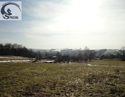 Działka na sprzedaż, Krakowski Skawina Radziszów, 122 750 zł, 982 m2, SMK-GS-3083