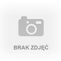 Działka na sprzedaż, Łódź M. Łódź Bałuty Moskule Moskule, 225 150 zł, 1501 m2, ARL-GS-671